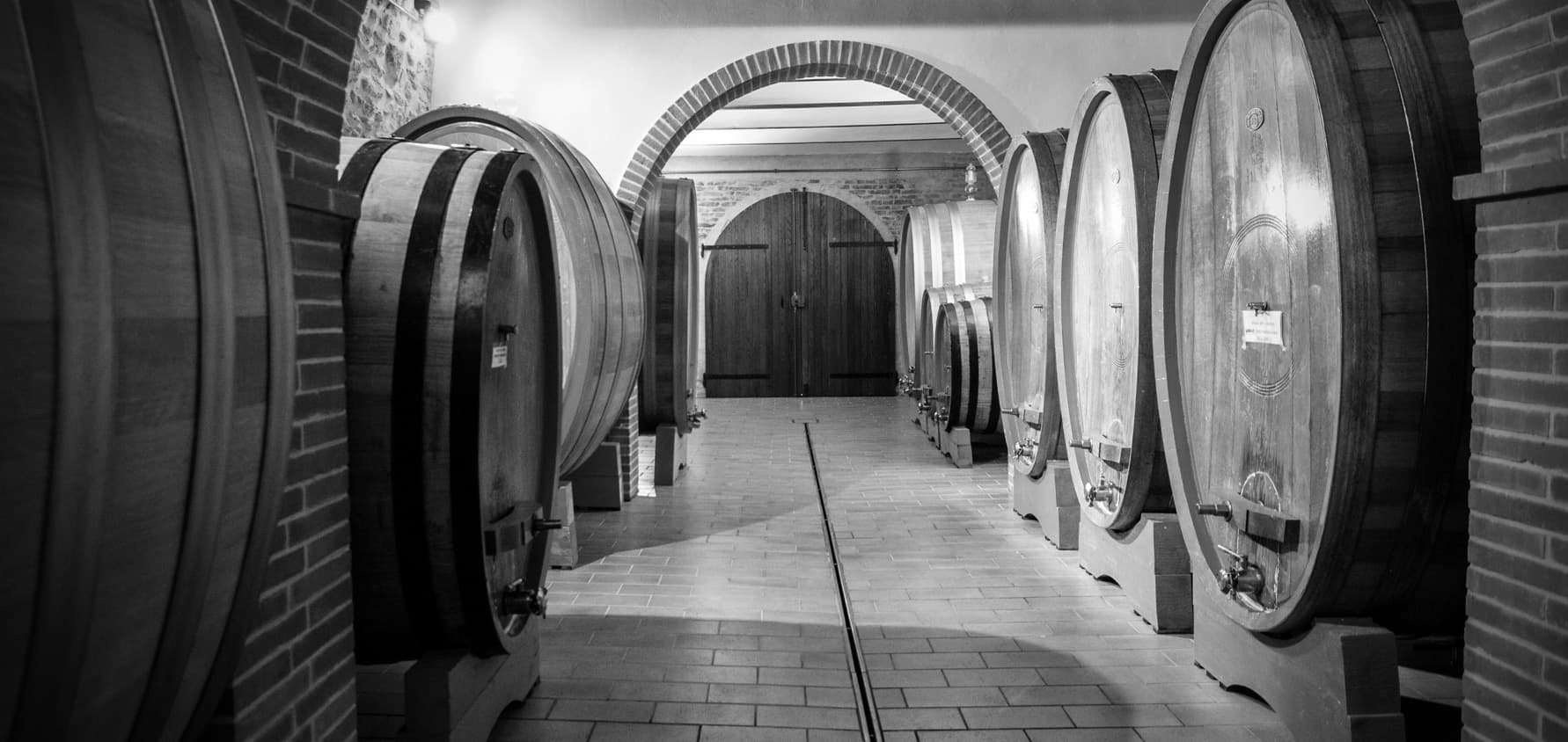 visite-in-cantina-a-montepuciano